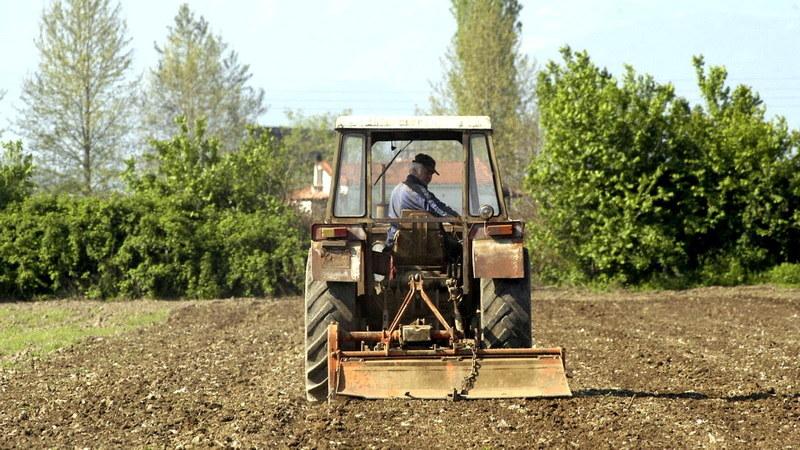 ΟΑΣΕ: Μαύρα Χριστούγεννα θα περάσουν πολλοί αγρότες περιμένοντας τη σύνταξη που καθυστερεί αδικαιολόγητα