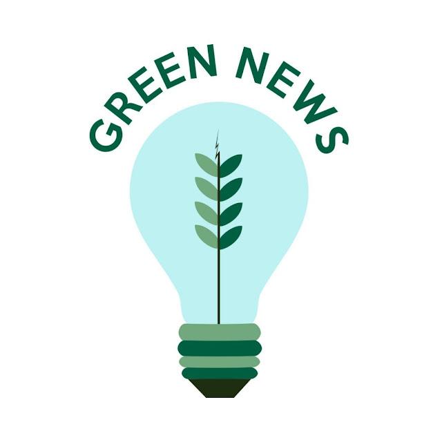 Green News i eko podsumowanie roku 2020 | koniec z plastikiem, veganuary, wegański ser
