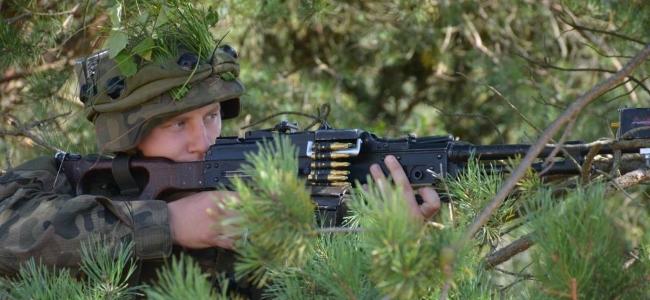 Литва передала України боєприпаси