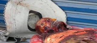 dog skinned alive