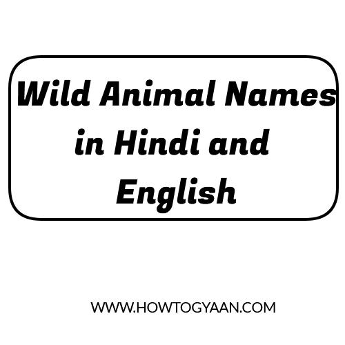 wild animal names, 20 wild animals name, wild animals name in Hindi, wild animals name in English wild animals name lis
