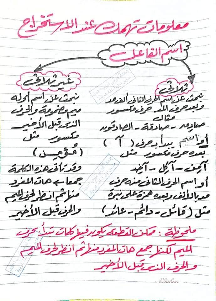 توقعات امتحان اللغة العربية للشهادة الاعدادية ترم ثاني 9