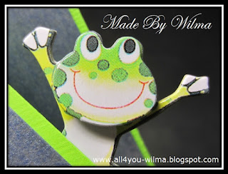 """Een close-up van een """"vrolijke"""" kikker. A close-up of a """"happy"""" frog."""