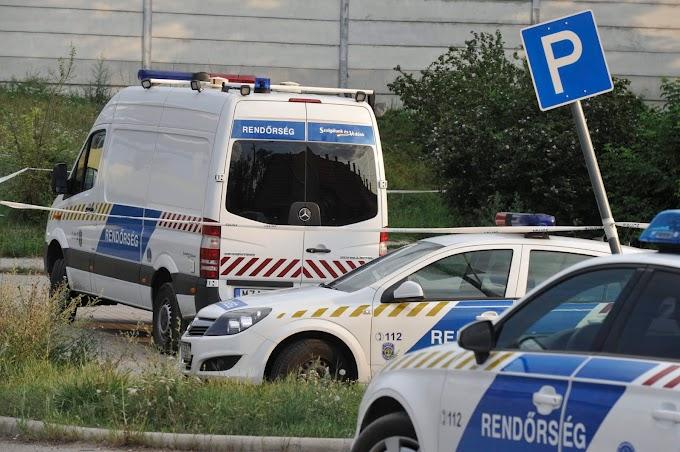 Már őrizetben van a 11 éves kislány halálával járó közúti baleset okozója