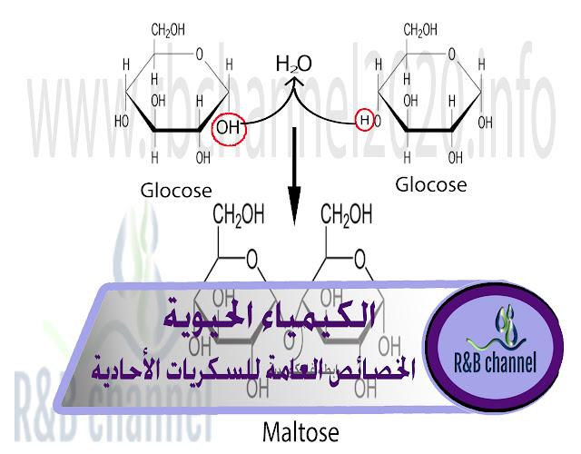 المركبات السكرية - الخصائص العامة للسكريات الأحادية