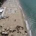 Εικόνες- σοκ από drone πάνω από τη Χαλκιδική