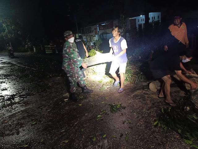 Kodim Sragen - Babinsa Sragen Kulon Bantu Warga Pembersihan Pohon Tumbang