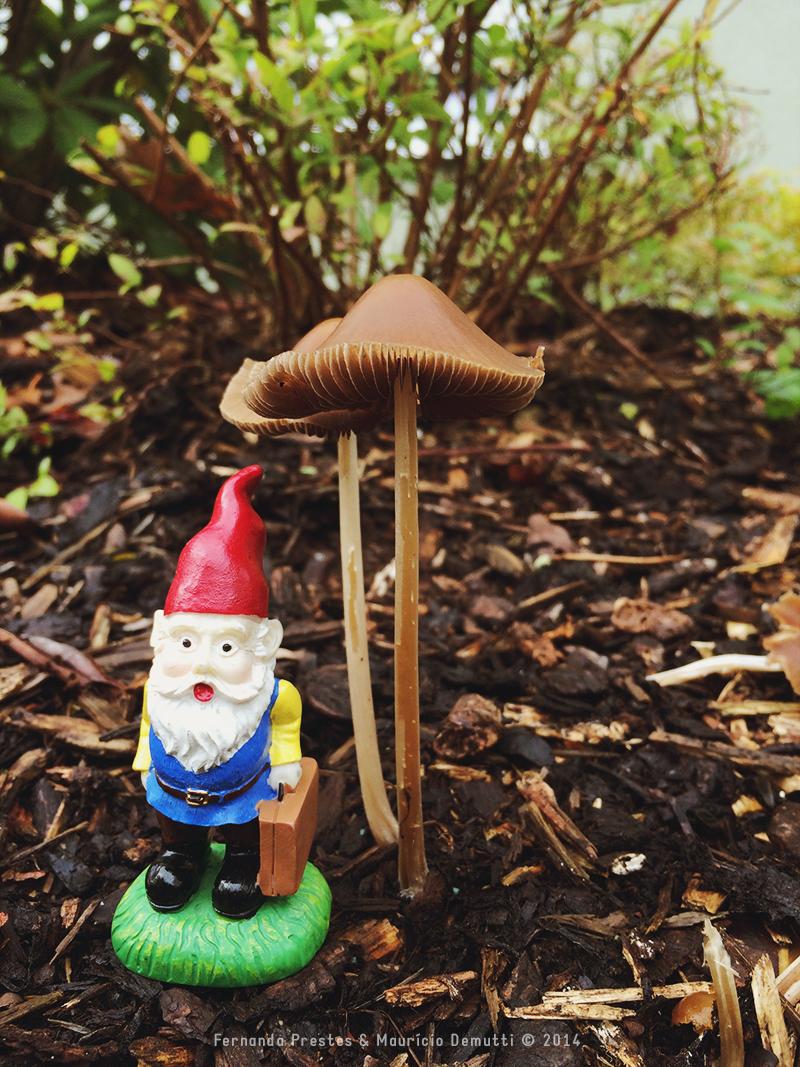 gnomo Cedrik e cogumelo