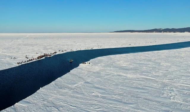 Σιβηρία: Μικροσκοπικό ζώο «αναστήθηκε» αφού άντεξε επί 24.000 χρόνια σε συνθήκες «κατάψυξης»