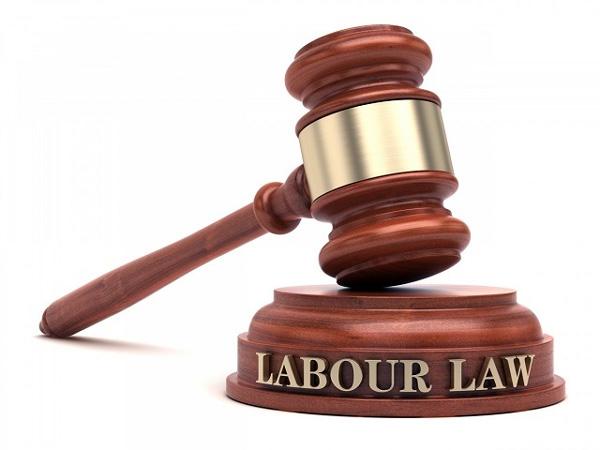Saudi Arabia, News, Gulf, World, Law, Labours, New labour law in Saudi