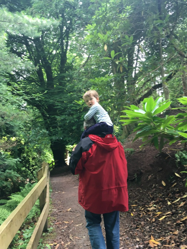 #MySundayPhoto-Number-29-toddler-on-adults-shoulders-at-Cefn-Onn-Park