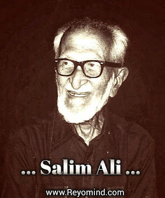 डॉ सलीम अली