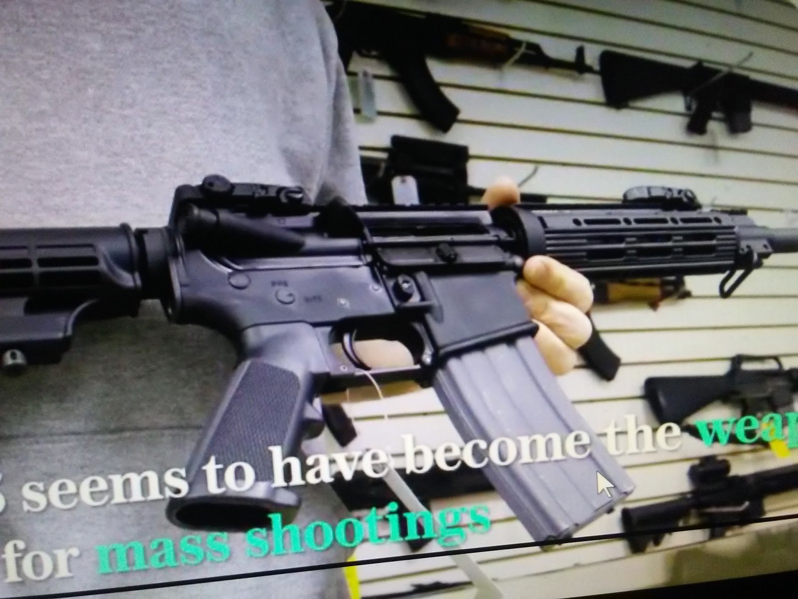 The Last Tradition: Florida lawmakers reject assault weapons