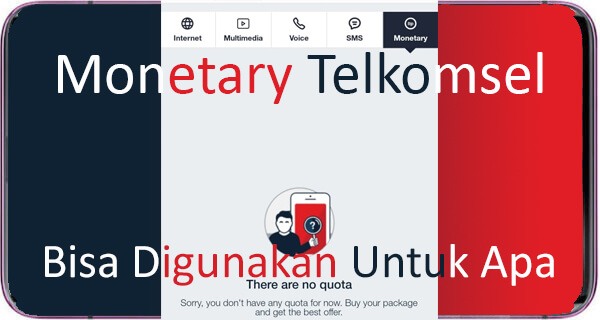 Monetary Telkomsel