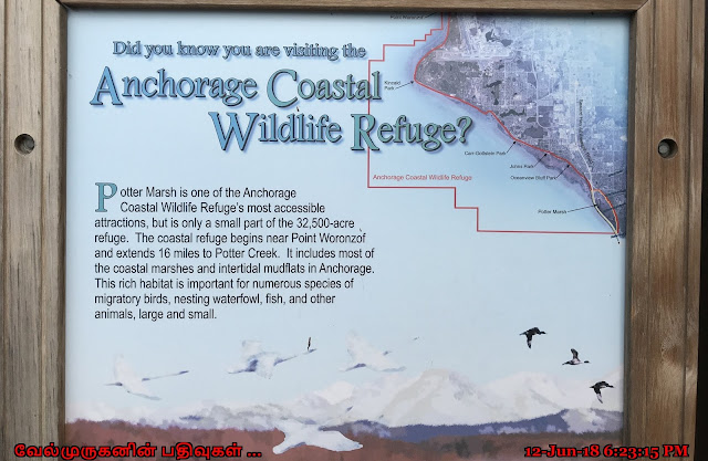 Alaska Coastal Wildlife Refuge