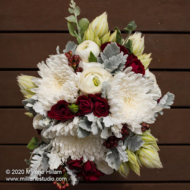 Wedding bouquet of white chrysanthemums, deep red rose buds and blushing bride proteas on a wooden deck