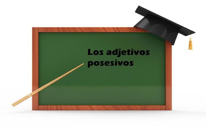 EJEMPLOS DE ORACIONES CON ADJETIVOS POSESIVOS