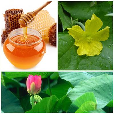 Cách trị tàn nhang hiệu quả bằng mật ong, lá sen và lá mướp