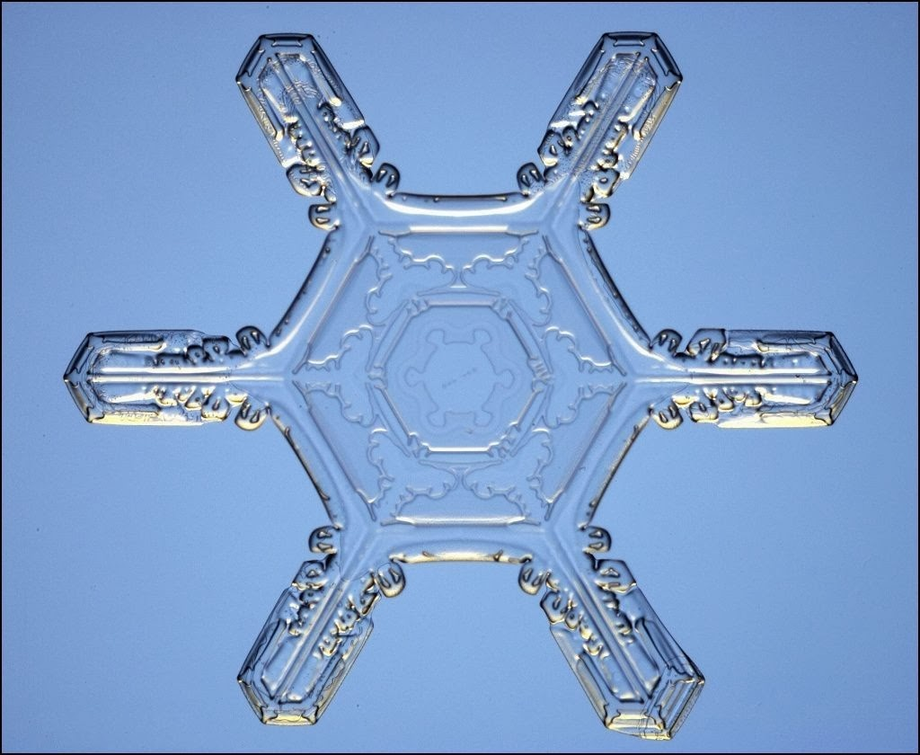 Mormon411 How A Snowflake Might Disprove The Theory Of