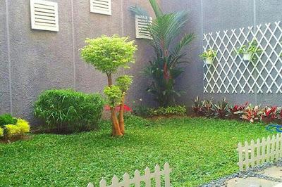 Jasa Tukang taman surabaya taman depan rumah sederhana