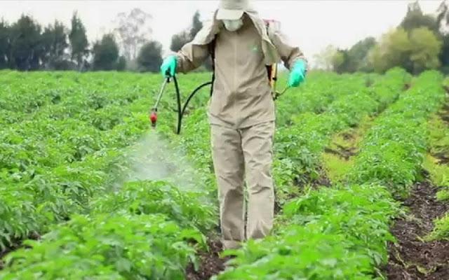 Δημήτρης Κοδέλας:  Δεν υπάρχει λόγος κάθε 5 χρόνια οι Αγρότες στην Αργολίδα να δίνουν ξανά εξετάσεις