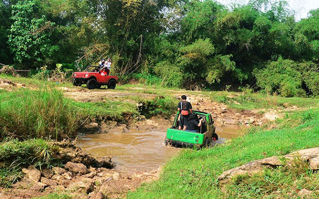 Jeep hijau melintasi kubangan berisi air