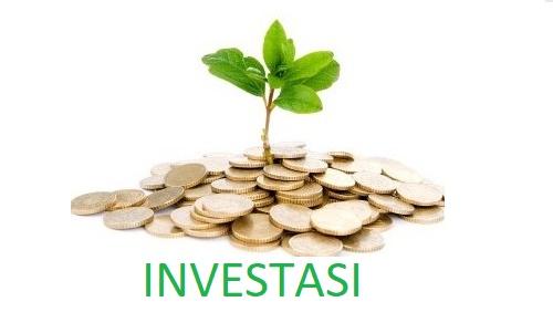 apa itu investasi