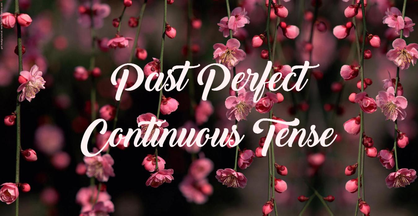 Materi Rumus Dan Contoh Kalimat Past Perfect Continuous Tense