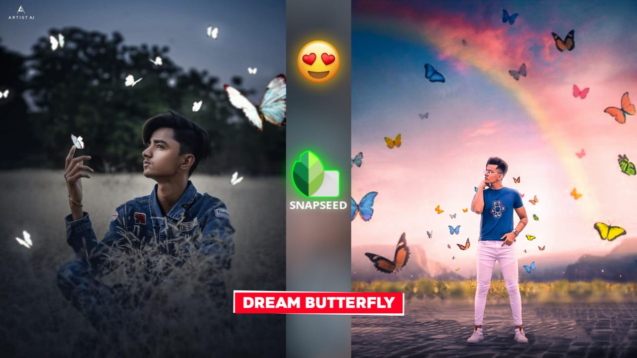 Snapseed Dream Butterfly