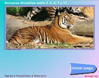 http://www.genmagic.net/repositorio/albums/userpics/divisors1c.swf