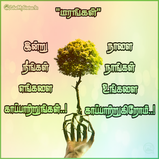 Tree tamil quote