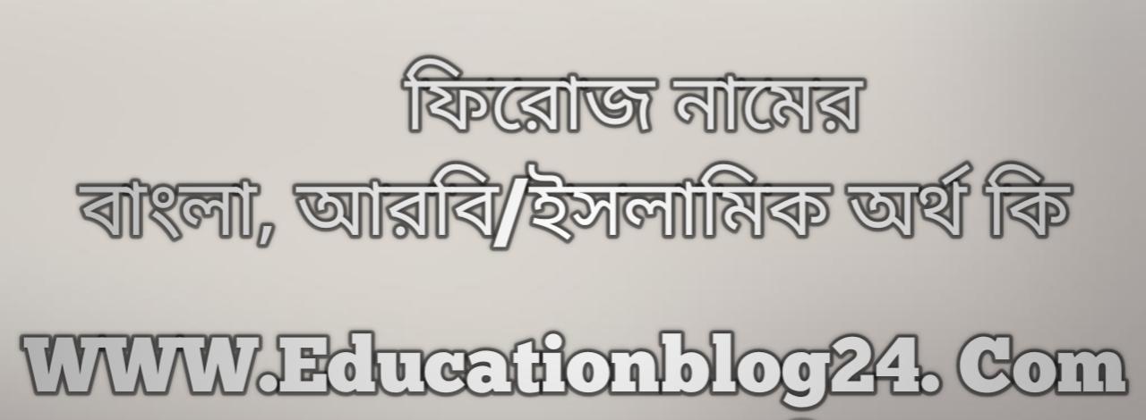 Feroz name meaning in Bengali, ফিরোজ নামের অর্থ কি, ফিরোজ নামের বাংলা অর্থ কি, ফিরোজ নামের ইসলামিক অর্থ কি, ফিরোজ কি ইসলামিক /আরবি নাম