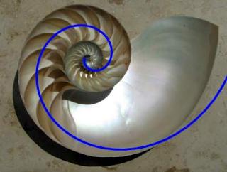 Série de Fibonacci em Python - Apostila