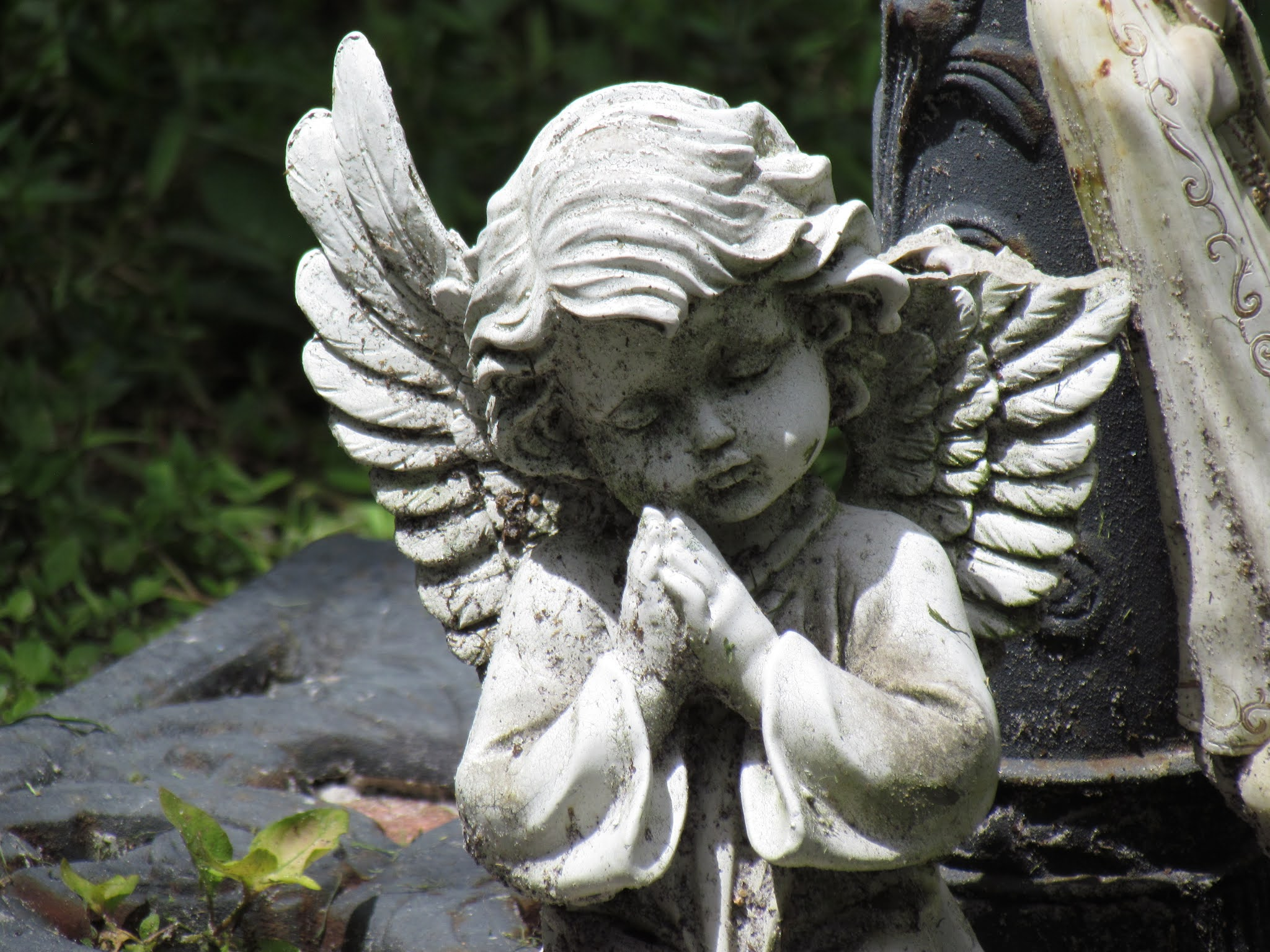 Angel statuary in the Dunedin Cemetery