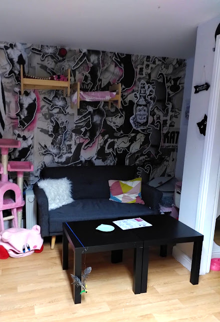 Mog on the Tyne   Newcastle Cat Cafe Review  - seating