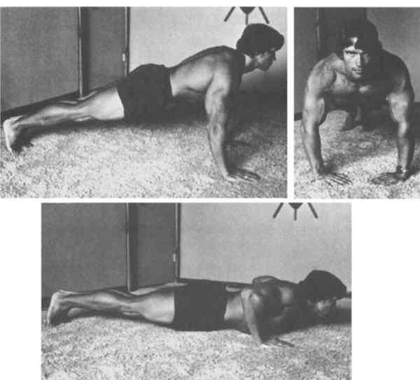 تمارين أرنولد لبناء العضلات في المنزل بالصور أثناء الحظر من فيروس كورونا