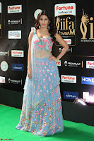 Amyra Dastur in Flower Print Choli Transparent Chunni at IIFA Utsavam Awards 36.JPG