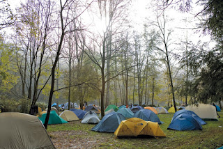 Lots of small tents in a forest