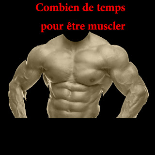 programme pour bien muscler les abdos niveau d butant par all musculation. Black Bedroom Furniture Sets. Home Design Ideas
