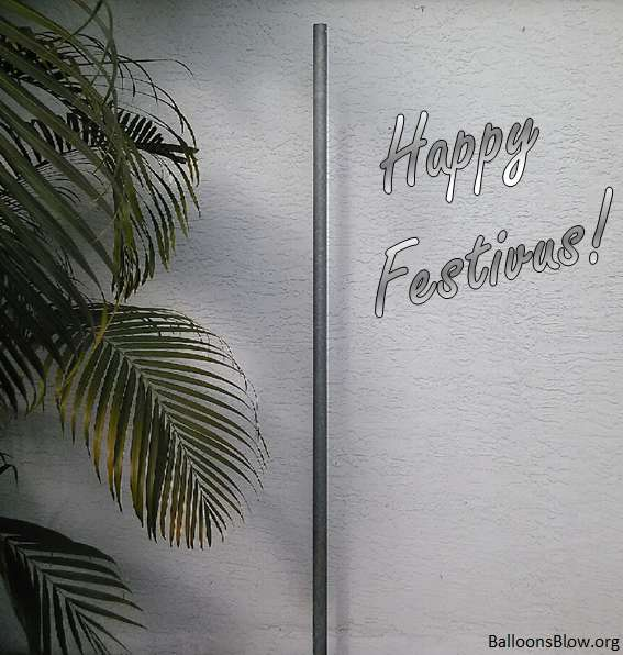 Festivus Wishes pics free download