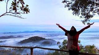 Wisata Lampung Bukit PJR Desa Panjerejo Pringsewu