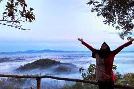Objek Wisata Lampung, Menikmati Pemandangan Alam di atas Bukit PJR Desa Panjerejo Pringsewu