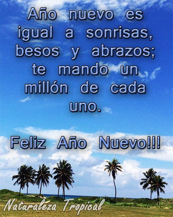Año nuevo es igual a sonrisas, besos y abrazos; te mando un millón de cada uno. Feliz Año Nuevo!!!