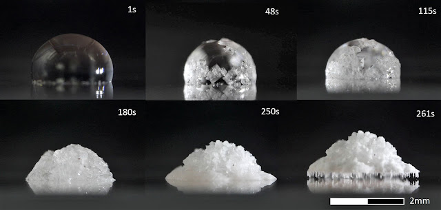Salt crystal grows legs to avoid slippery surface