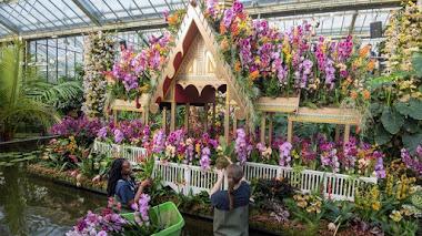 Festival de Orquídeas en Kew Gardens: un paraíso tropical inspirado en Tailandia