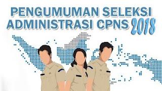Pengumuman Hasil Seleksi Administrasi Penerimaan CPNS IAIN Batusangkar Tahun 2018