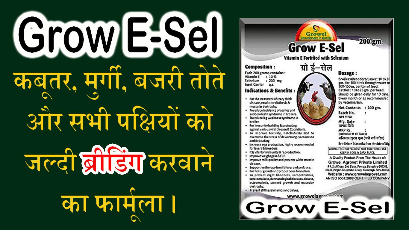 grow e sel