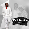 Album: TRIBUTE - Dare Akinsanya