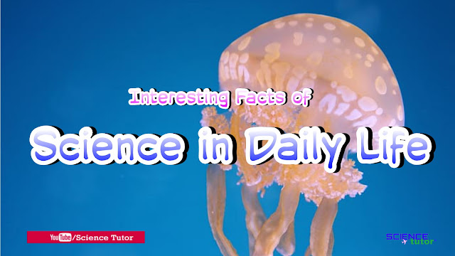 Interesting and Amazing Facts of Human Body, Mushrooms, Animals and Science in Daily Life