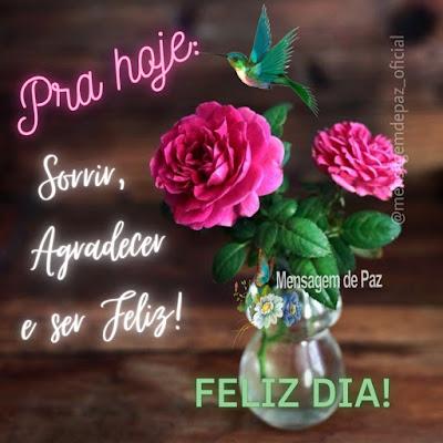 Pra hoje: Sorrir, Agradecer e ser Feliz! Feliz Dia!